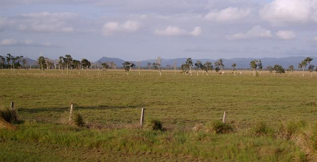 queensland_farmland